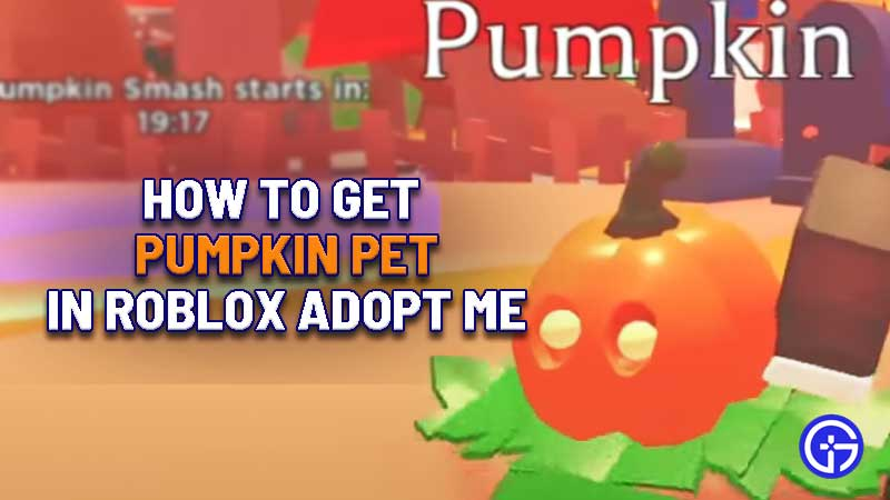 How To Get Pumpkin Pet In Adopt Me 2020 For Free