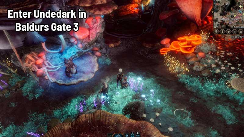 Baldurs Gate 3 Undertake