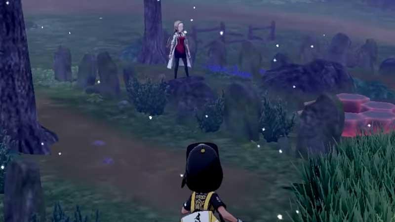 where-is-oleana-pokemon-sword-shield