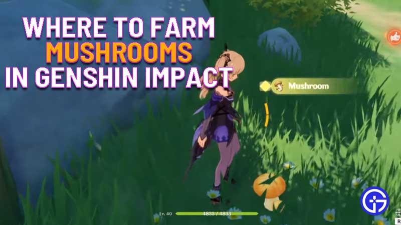 where to farm mushrooms in genshin impact