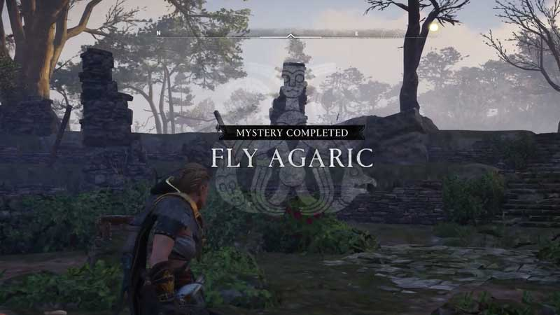 Fly Agaric Puzzle Solution Guide