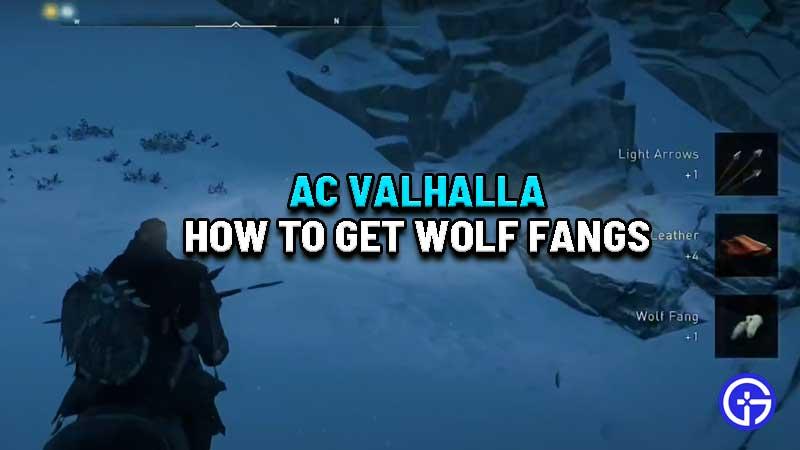 ac-valhalla-wolf-fangs-location