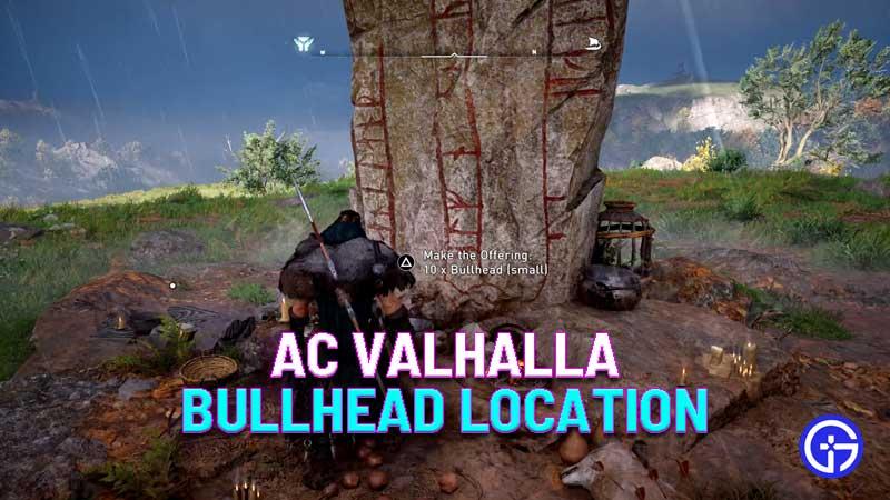 assassin's creed valhalla bullhead location