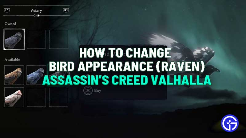 assassins-creed-valhalla-how-to-change-bird-appearance