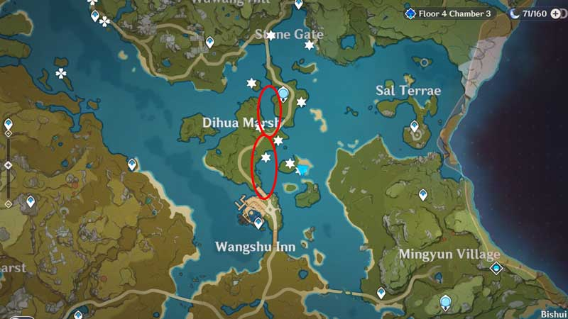 best locations to find golden loach in genshin impact