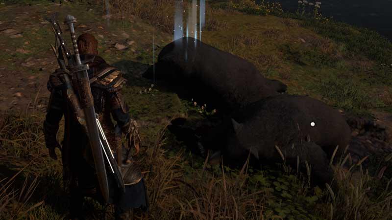 black-bear-fur-how-to-get