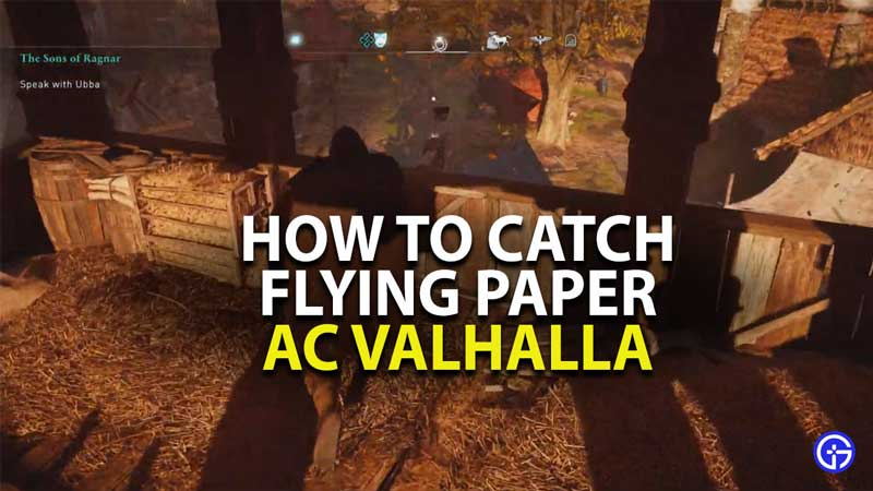 how to catch flying paper in assassins creed valhalla