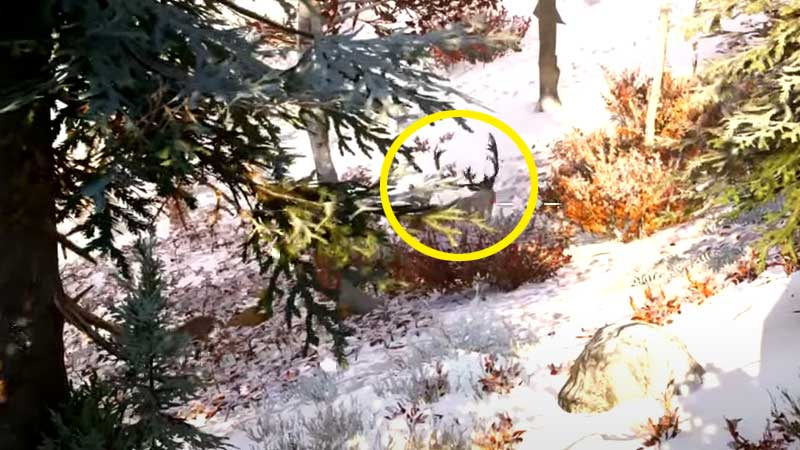 how-to-get-deer-antlers-ac-valhalla