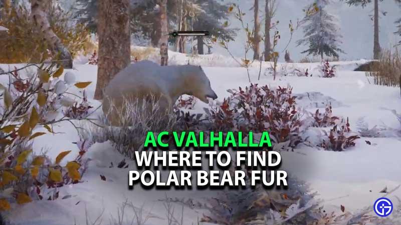 how-to-get-polar-bear-fur-valhalla