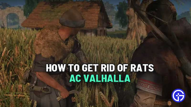 how-to-get-rid-of-rats-problem-ac-valhalla