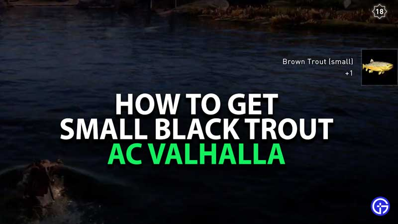 how-to-get-small-black-trout-assassins-creed-valhalla
