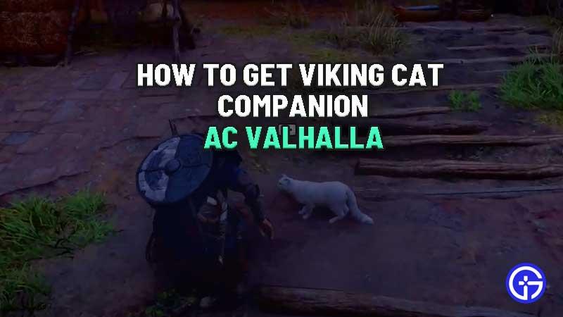 how-to-get-viking-cat-companion-ac-valhalla