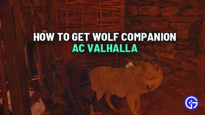 how-to-get-wolf-companion-ac-valhalla