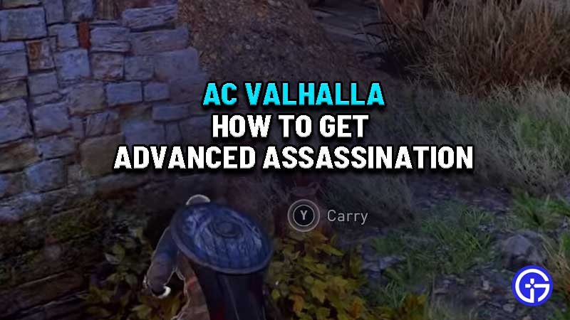 how-to-use-advanced-assassinations-skill