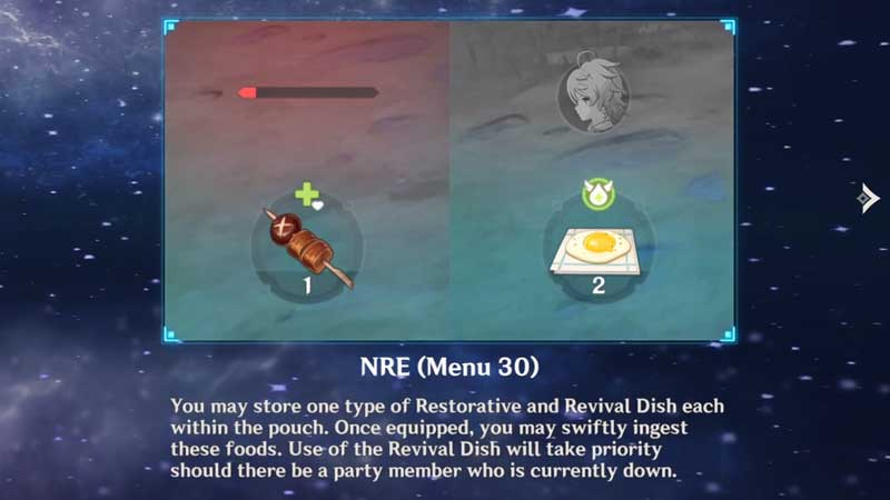 how to use genshin impact nre (menu 30)