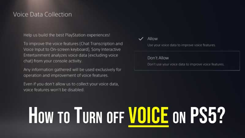 Turn off Voice on PS5
