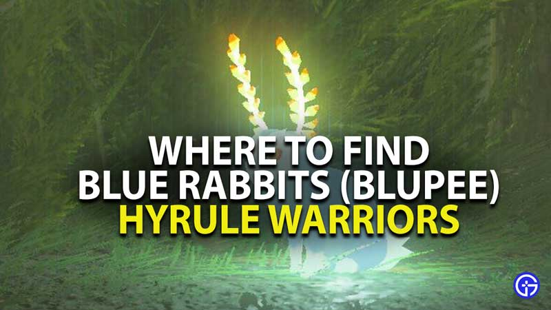 where to find blue rabbits in hyrule warriors age of calamity