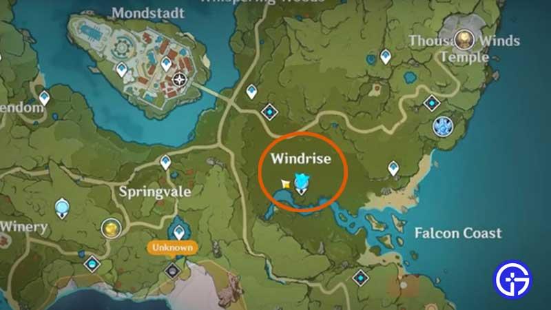 where-to-find-windwheel-aster-location-genshin-impact