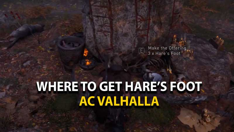 ac-valhalla-where-to-get-hares-foot-location