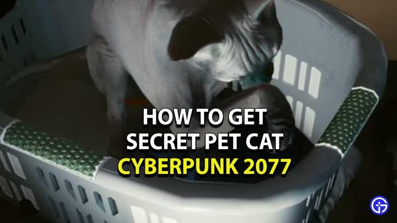 how-to-get-secret-pet-cat-cyberpunk-2077