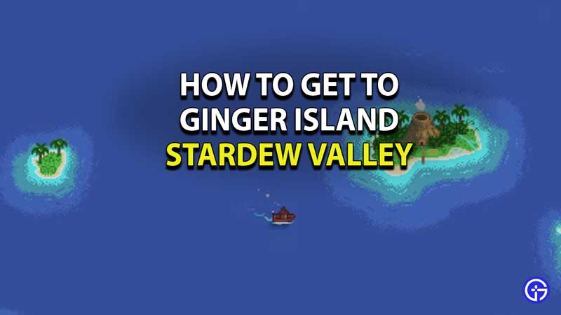 how-to-get-to-ginger-island-stardew-valley