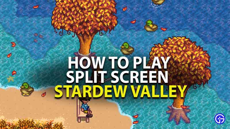 how to play split screen in stardew valley