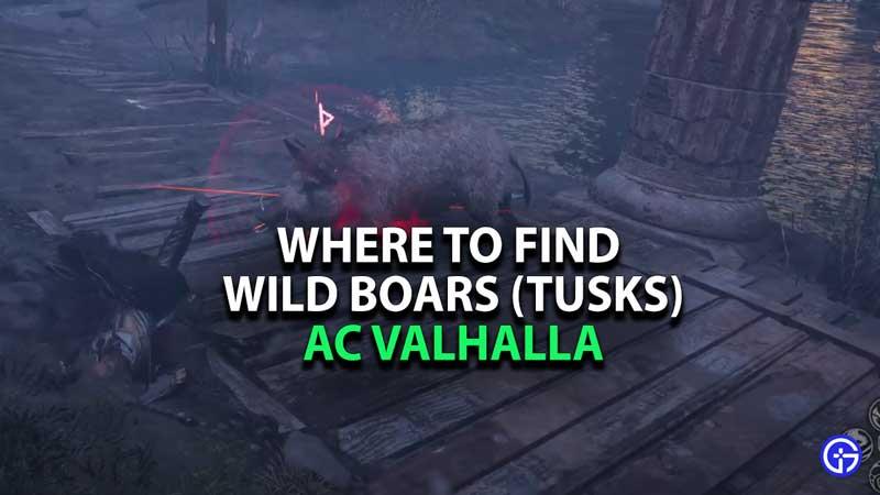 where-to-find-wild-boars-ac-valhalla