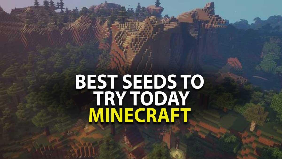 Best Minecraft Seeds for 2021
