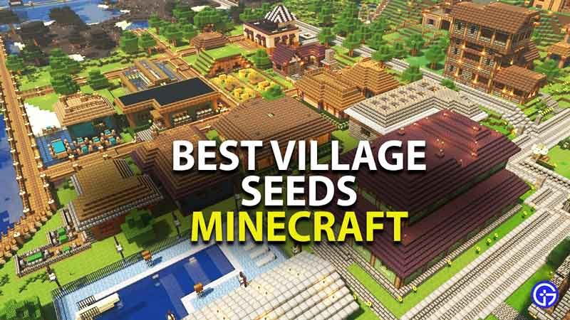 Best Minecraft Village Seeds For January 2021