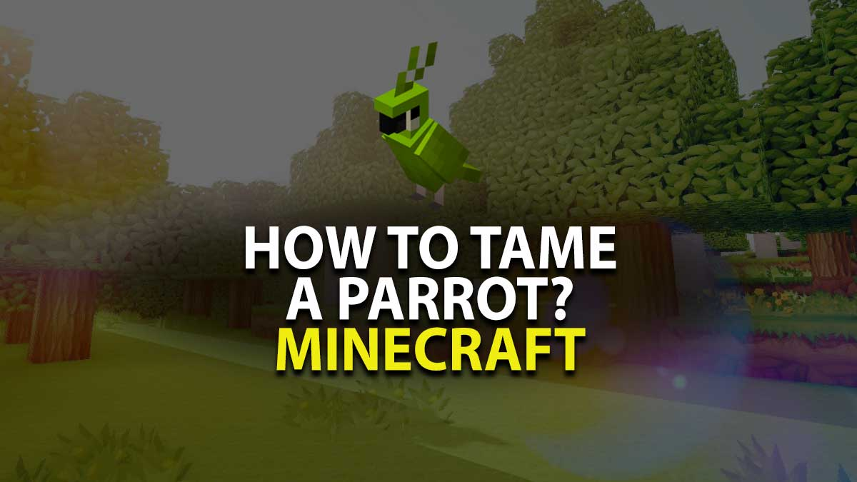 How to Tame a parrot in Minecraft?