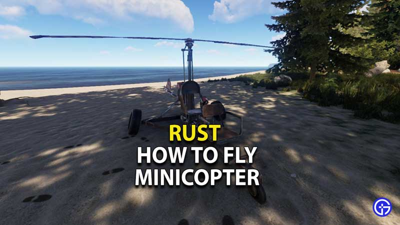 rust-how-to-fly-minicopter