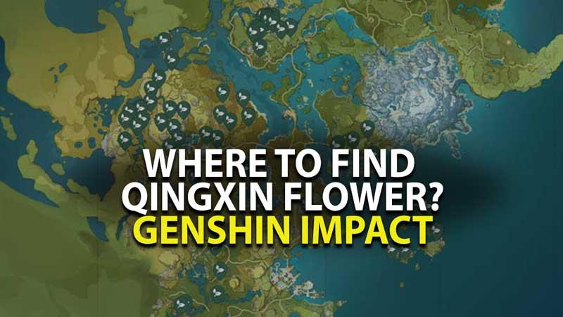 Genshin Impact Qingxin Flower Location Guide