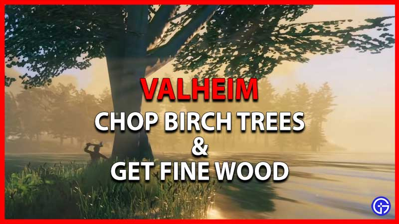 Chop Birch Trees in Valheim