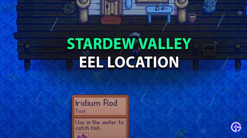 Eel Stardew Valley Location