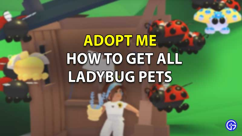 How to Get Ladybug Pets in Roblox Adopt Me