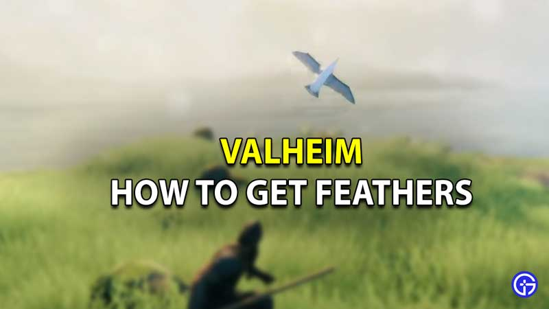 How to Get Feathers in Valheim