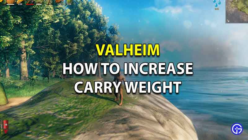 How to Increase Carry Weight in Valheim