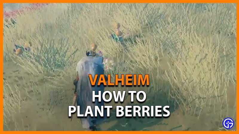Valheim Plant Berries