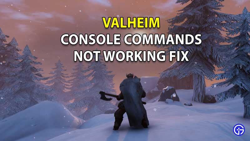 Valheim Console Commands Not Working Fix