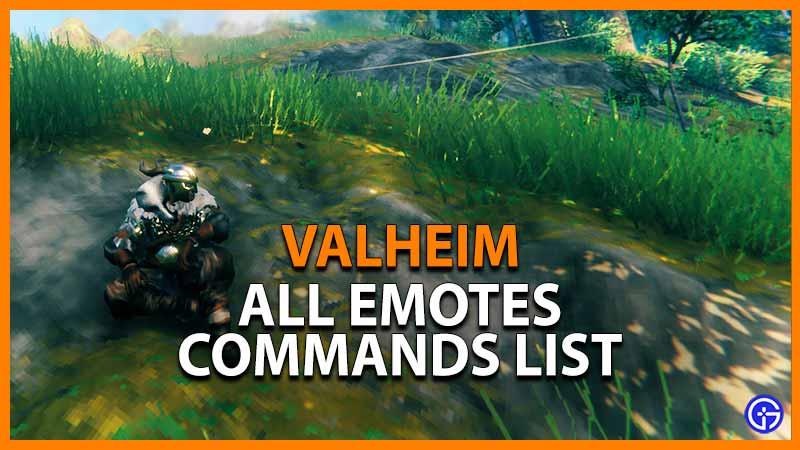 Valheim Emotes Commands List