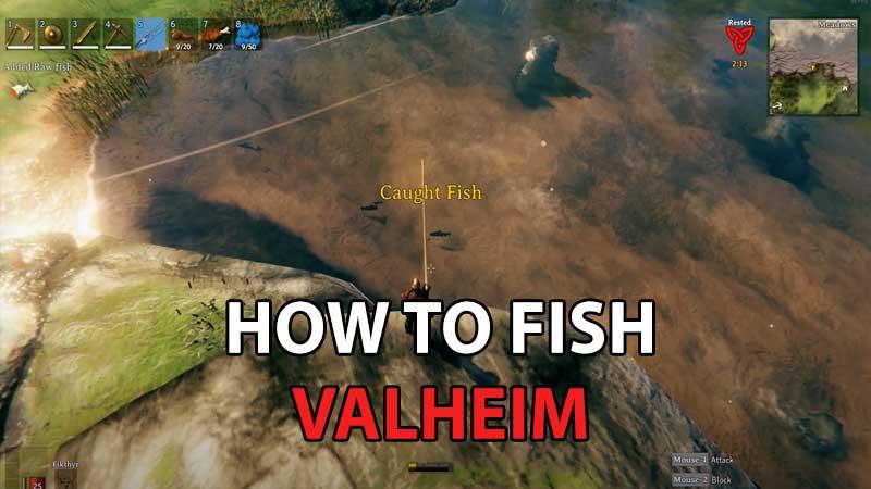 Valheim FIshing Guide a