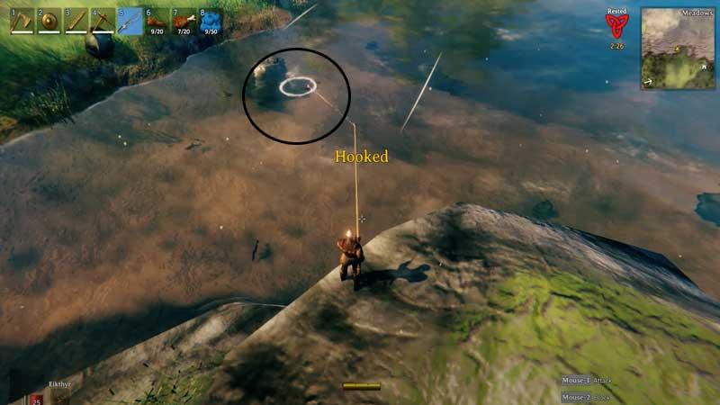 Image result for fish types valheim