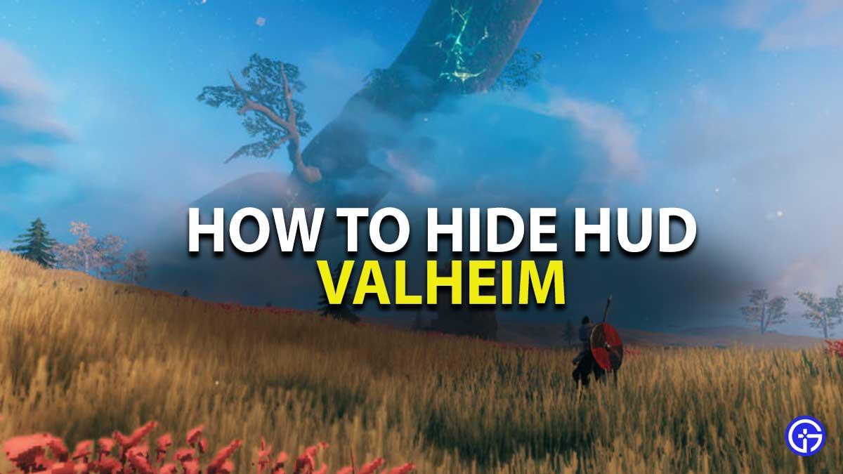Valheim HUD Guide