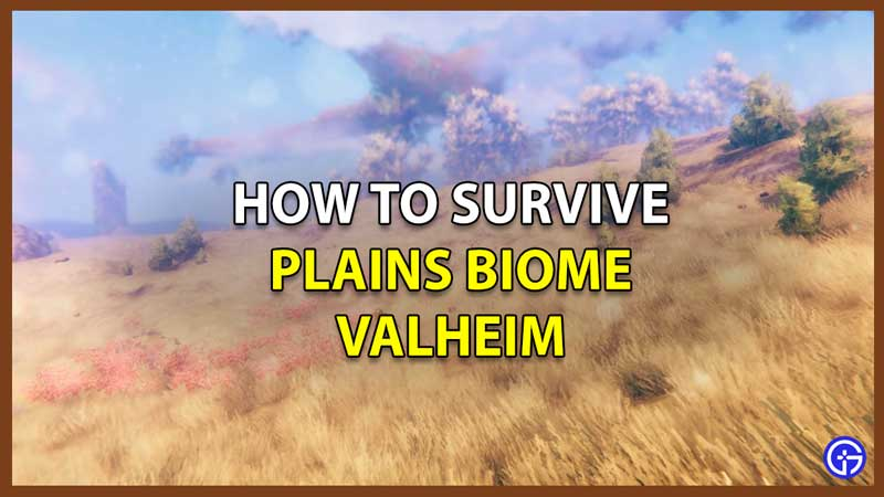 Valheim How To Survive Plains Biome