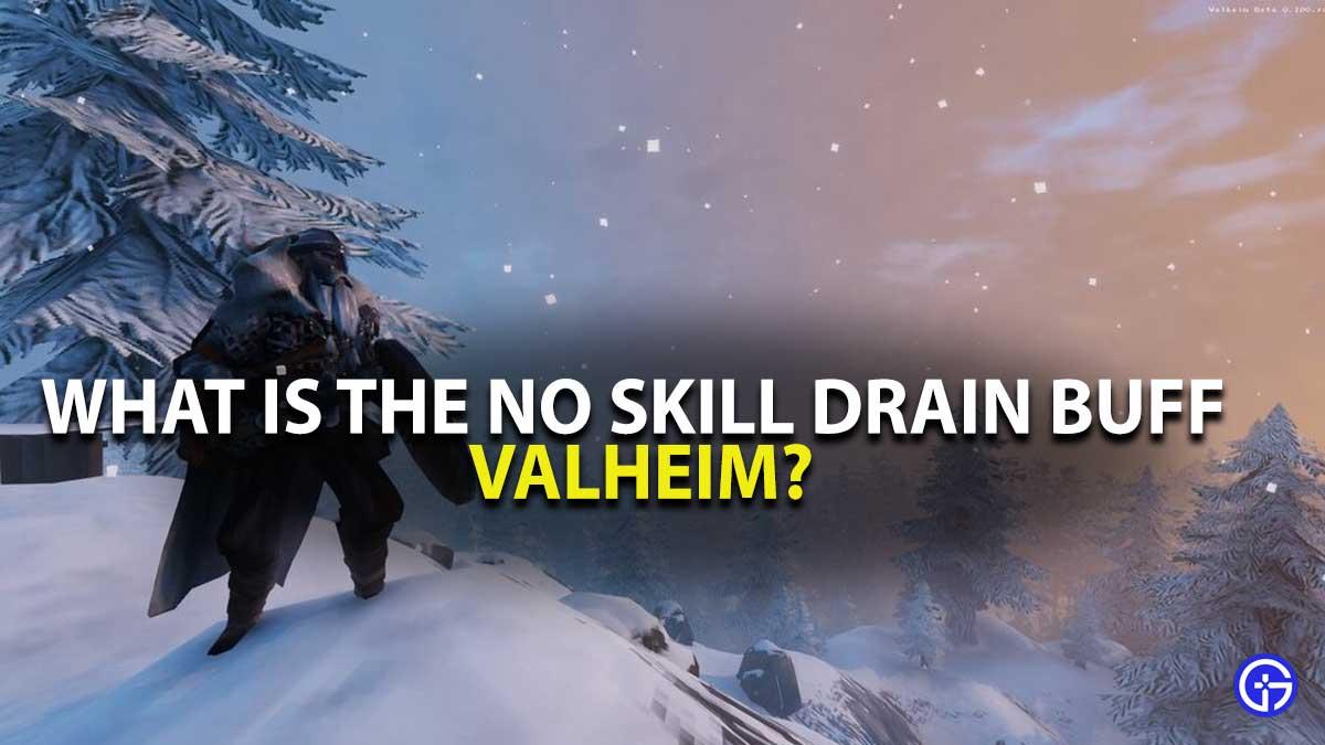Valheim No Skill Drain Buff Guide