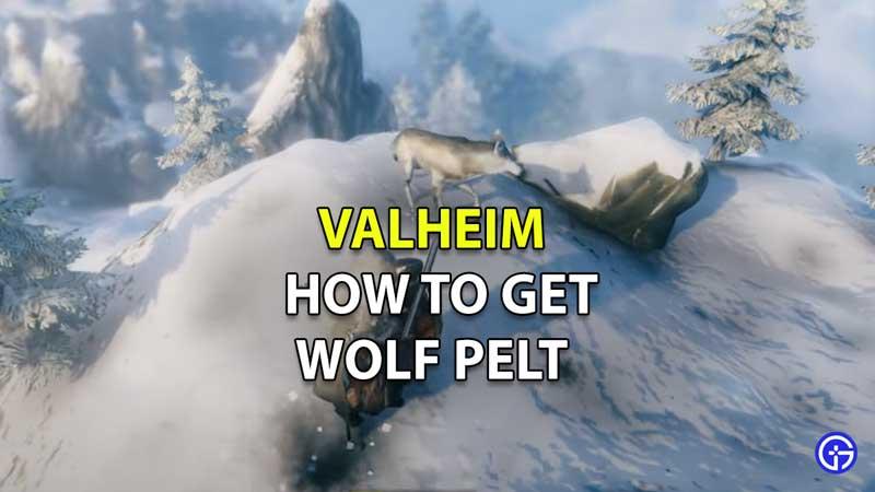 Valheim Wolf Pelt