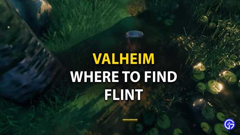 Where to Find Flint in Valheim
