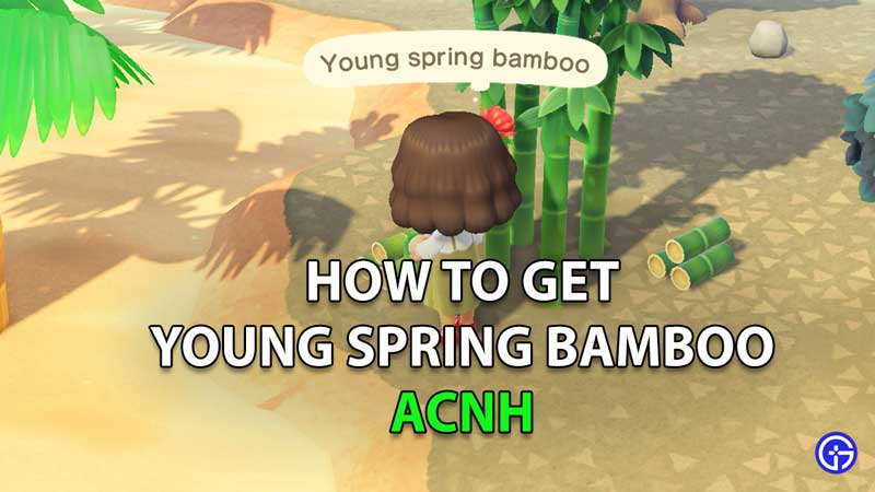 Animal Crossing New Horizons Young Spring Bamboo