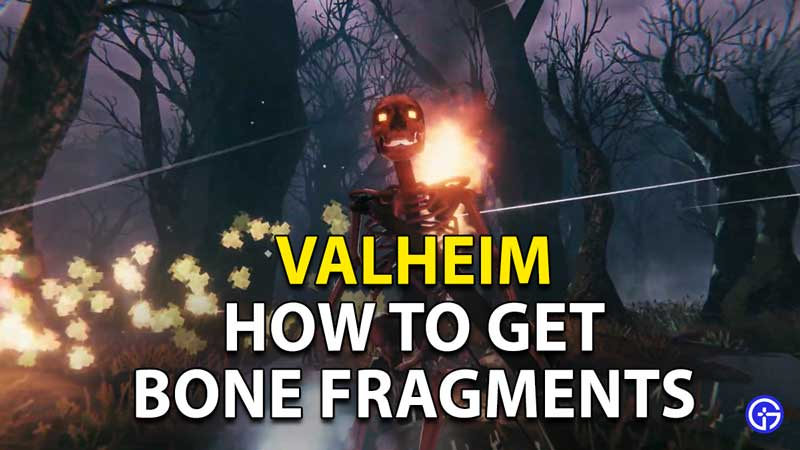 Valheim Bone Fragments Guide