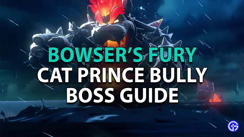 Cat Prince Bully Bowser's Guide